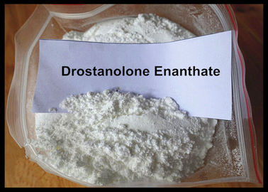 Çin Masteron Enanthate Powder Anabolic Steroid Drostanolone Enanthate For Cutting Cycle Tedarikçi