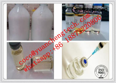 Çin Testosterone Suspension100 Water Based Steroids Test Suspension 100mg/Ml Tne Suspension Tedarikçi