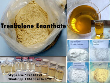 Çin Yellow Steroid Powder Trenbolone Enanthate for Bodybuilding with Good Quality Distribütör